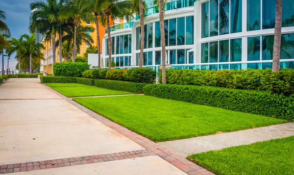 Commercial Landscaping Company in Dubai