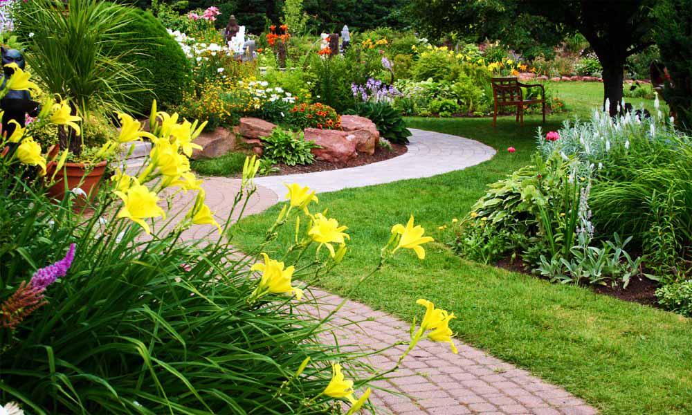 Garden landscaping company in Dubai