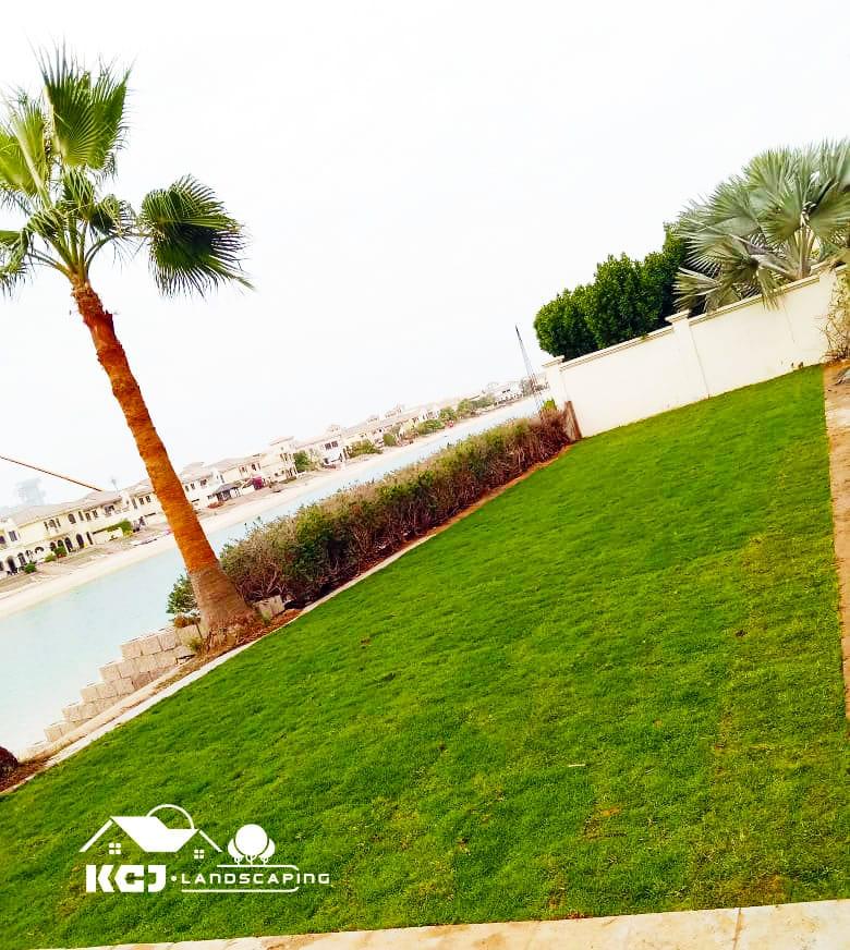 Grass Landscaping Dubai