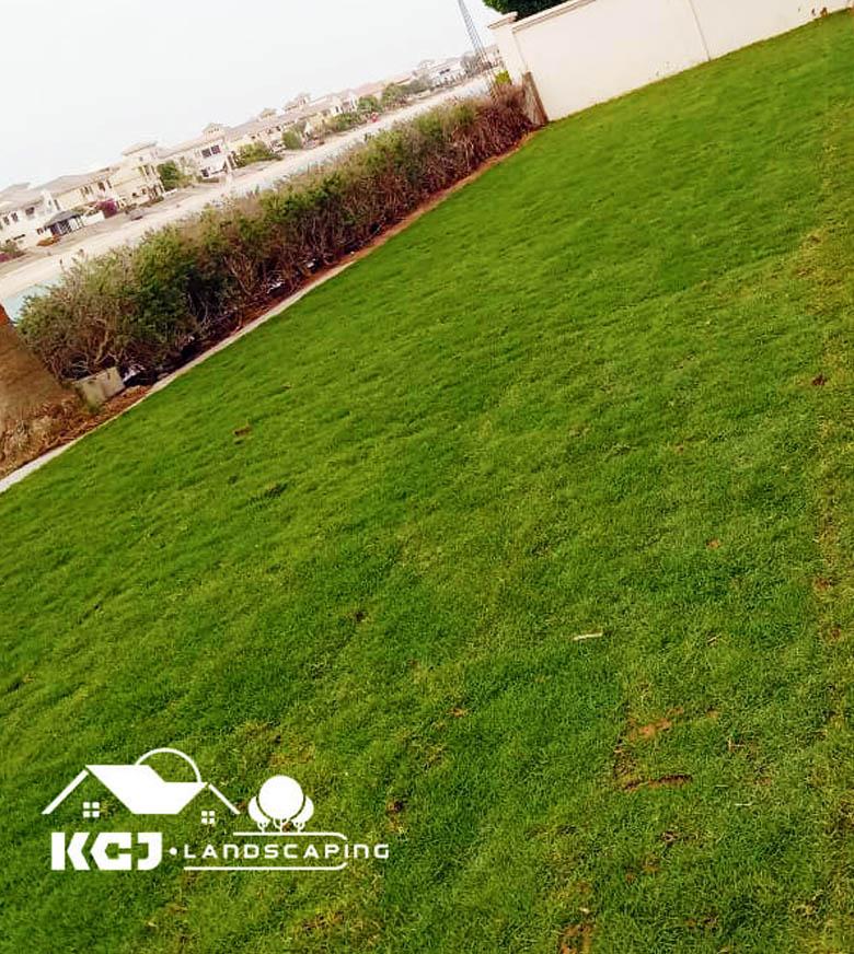 Natural Grass Landscaping Dubai